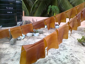 rubber sheet for drying
